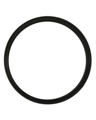 STANADYNE FUEL MANAGER O-Ring Seal (Qty 6) 28869