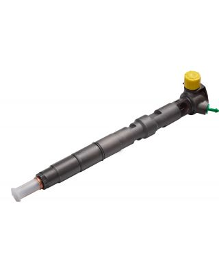 R01001A DELPHI Reconditioned Injector
